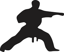 Strength Training in Martial Arts